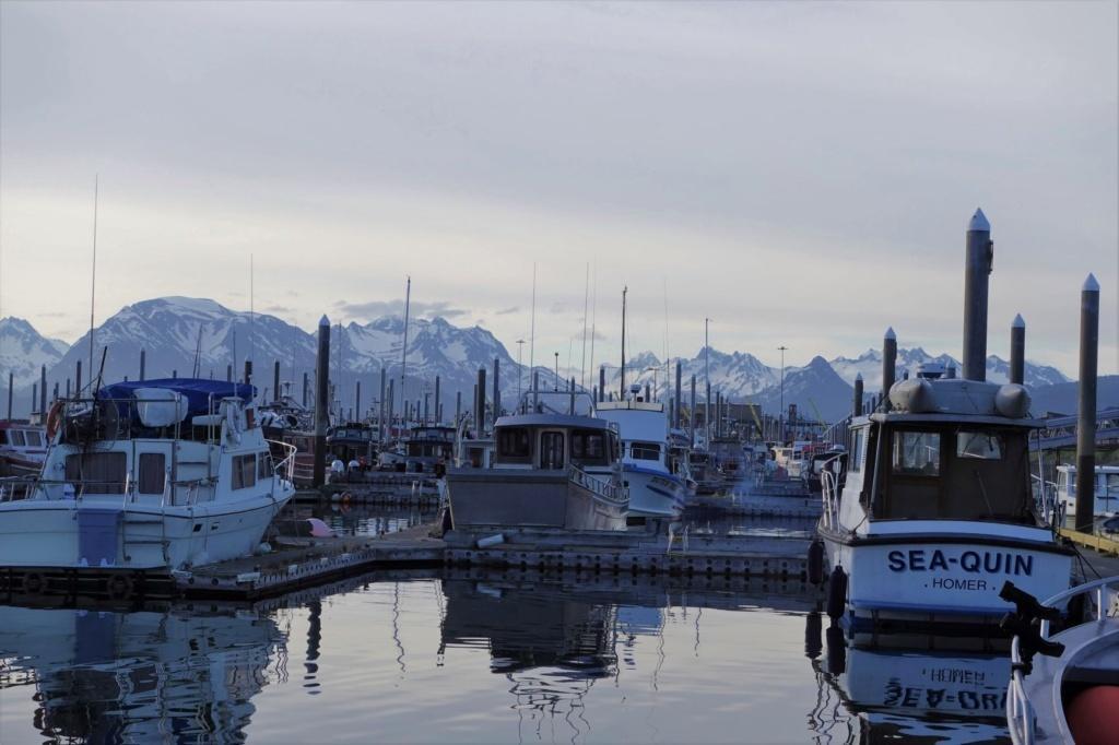 Homer Dock